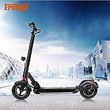 Freego Elektro-Scooter 48V wiederaufladbare Batterie Kick-Scooter mit maximaler Fahrstrecke 50 bis 60 km für Erwachsene