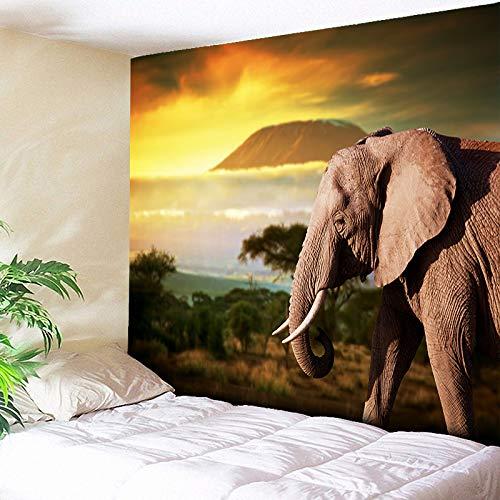 myvovo Tapiz de Elefantes Indios Colgante de Pared Amanecer y Atardecer Naturaleza...