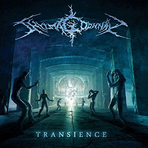 Transience (Zug Von Mp3-songs)