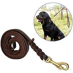 Focuspet Correa del Perro, 170X1.2cm Correa de Cuero para Perros Correa de Cuero Trenzada para Perros Correa de Cuero Impermeable para Perros Grandes para Perros Marrón Oscuro
