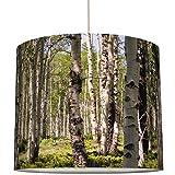 Anna Wand Lampenschirm/Hängelampe BIRKENWALD - Schirm für Lampen mit Wald-Motiv und Birken - Sanftes Licht auch für Tischleuchte oder Stehlampe - ø 40 x 34 cm