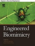 Engineered Biomimicry: Chapter 6. Muscular Biopolymers