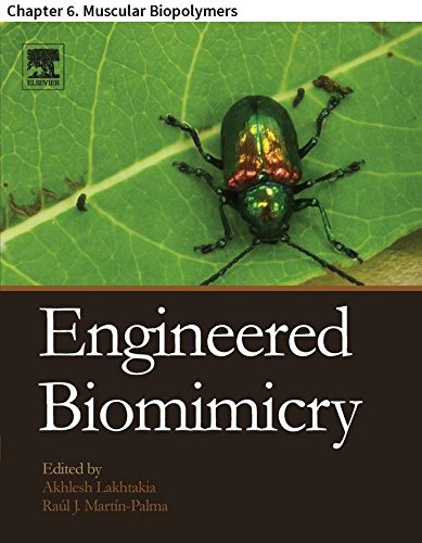 Engineered Biomimicry: Chapter 6. Muscular Biopolymers (English Edition) -