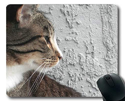 Gaming Mouse Pad, Mauspad für Tierkatze, Mauspad für Computer cat257