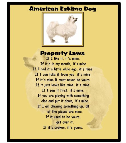 American Eskimo Hund–Property Laws–Mauspad