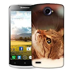 Snoogg Cute Kitty Designer Protective Phone Back Case Cover For Lenovo S920