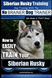 Siberian Husky Training | Dog Training with the No BRAINER Dog TRAINER ~ We Make it THAT Easy! |: How to EASILY TRAIN Your Siberian Husky