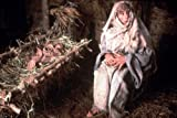 Image of Monty Python - Das Leben des Brian