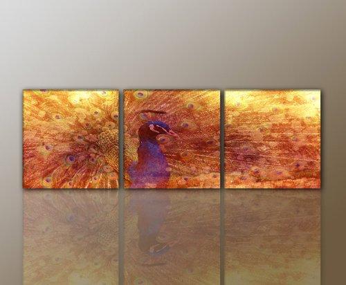 3 teiliges WANDBILD Abstrakt MODERN Art Print Leinwandbild (pfau-3teilig-50×50 – Gesamt: 160x50cm) traumhaft Bilder fertig gerahmt mit Keilrahmen riesig. Ausführung Kunstdruck auf Leinwand. Günstig preiswert inkl Rahmen TOP MODERN BESTE QUALITÄT Kein Poster sondern Leinwand stylisch wertig aus