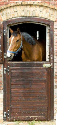 Selbstklebende Türtapete Pferd im Stall - 93 x 205 cm in Premium-Qualität: Abwischbar, brillante Farben, rückstandsfrei zu entfernen