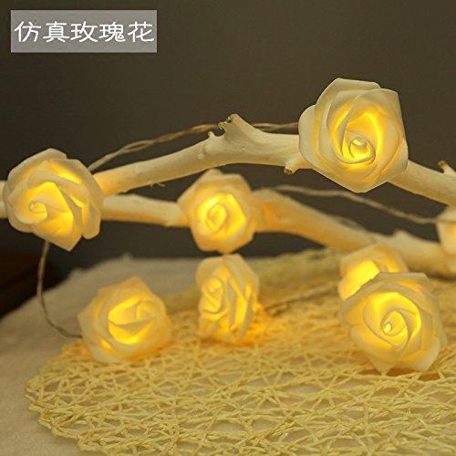 LED-Leuchten blinken Lichter ins romantische Geburtstag Mädchen herzen Dekoration Vorschlag simulation Akku licht Rose, 2 m Batterie Geld