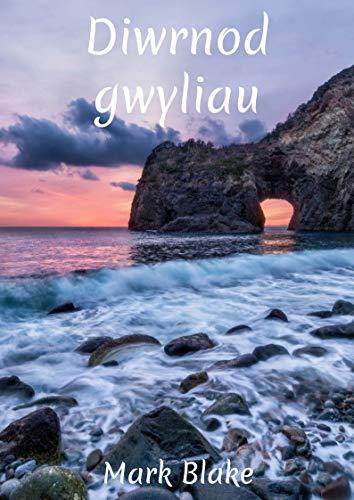Diwrnod gwyliau (Welsh Edition) por Mark  Blake