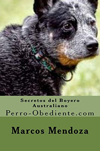 Secretos Del Boyero Australiano/Australian Cattle Dog Secrets: Perro-obediente.com