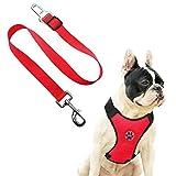 AFfeco Hundegeschirr für Hunde, mit Clip, für Reisen, rot, M