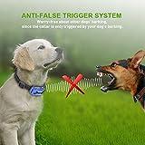 Wolfwill Anti-Bell Erziehungshalsband Hunde Trainingshalsband mit Verstellbar Ton und Vibration