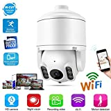 Ptz Security Camera Etanche IP WiFi Surveillance Surveillance dôme Camera Night Vision Détection de Mouvement - Carte de Soutien 64G TF - Audio bi-directionnel(EU)