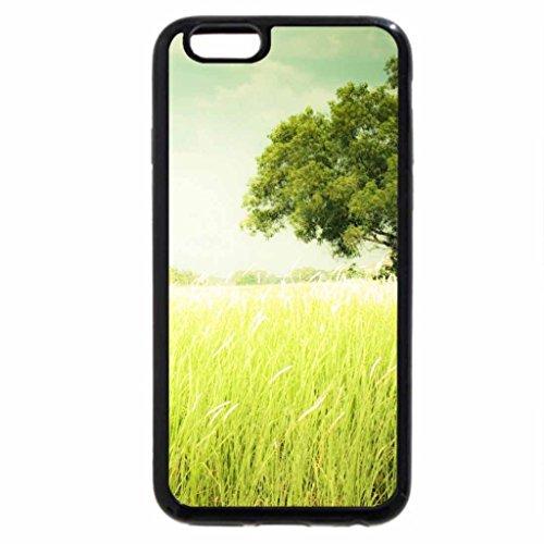 iPhone 6S / iPhone 6 Case (Black) Summer field grass