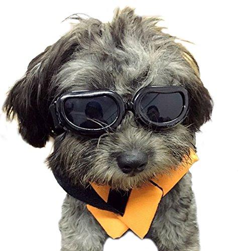 Kailian & reg; Dog Goggles Stilvolle wasserdichte Anti-UV-Sonnenbrillen für Hündchen Welpen-Schwarz