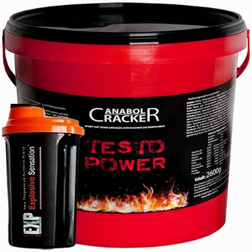 Beste Muskelaufbau-stack (Testo Power, Whey Proteine Creatin Shake, 2600g Dose, Himbeer Geschmack Eiweißpulver + Shaker)