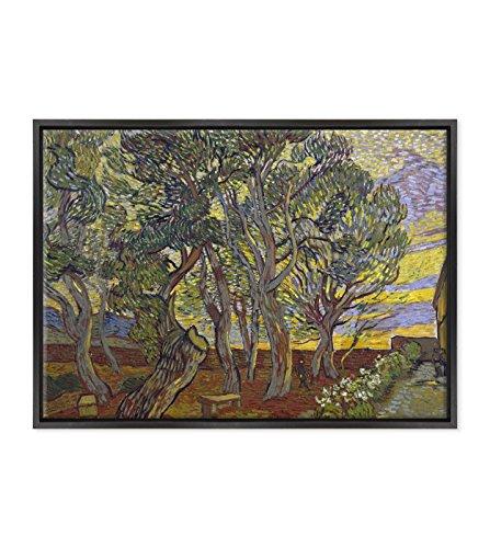 Bild auf Leinwand Canvas–Gerahmt–fertig zum Aufhängen–Van Gogh–The Garden Bench at Saint Pauls Hospital–Die Gartenbank Krankenhaus Saint Pauls Dimensione:...