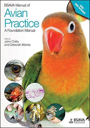 BSAVA Manual of Avian Practice: A Foundation Manual