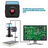 USB Mikroskopkamera, 14MP HDMI Digital Industrie Videomikroskopkamera Satz Hochauflösende C Mount Kamera für den Unterricht von Mikroelektronik Schmuck(EU)