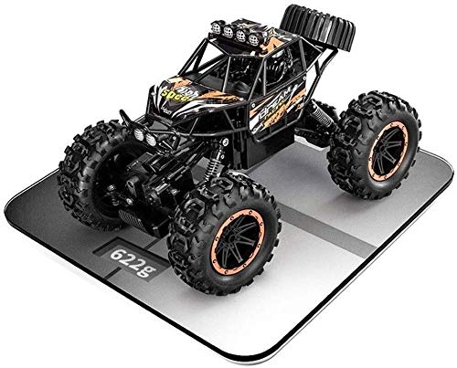 Liutoys 4WD Rock-Crawlers 4x4 RTR Fahren Auto Doppel Motoren Antriebs 1/14 RC Cars Big Foot Autoradio-Fern All Terrain Monster Truck Off-Road-Auto for Kind-Kind-Jungen-Geschenk