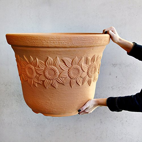 ᐅ Terracotta Pflanzkübel - wählen Sie aus den Bestsellern aus ...