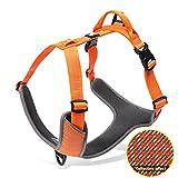 Louvra Einstellbare Hundegeschirr Gepolsterter Brustgeschirre 3M Reflexion Nylon Oxford für große,mittlere und kleine Hunde(S-M-L-XL)