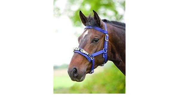 Shires Equestrian Nylon Kappzaum Lunge – Größe: Cob Farbe: dark ...