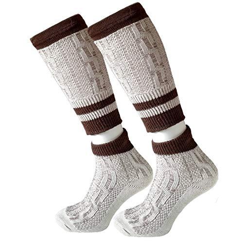 Gesteiner Leather | Trachtensocken Trachtenstrümpfe Herren Loferl 2-teilig Wadenwärmer Kniebundstrümpfe Trachten Socken Lang mit Zopfmuster | beige natur weiß grau Gr. 39-48 (41-42 EU, Beige/Braun)
