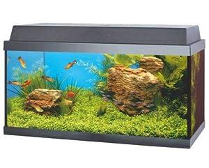 Juwel Korall 60 Goldfish Aquarium