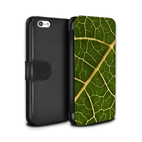Stuff4 Coque/Etui/Housse Cuir PU Case/Cover pour Apple iPhone 5C / Pack 8pcs Design / Campagne Colombie Collection Feuille Verte