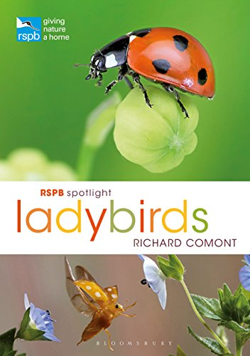 RSPB Spotlight Ladybirds (English Edition)