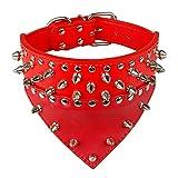 Dogs Kingdom 50,8cm–66cm Länge Dreieck Kragen Design Spikes Silber Nieten Nieten Leder Hundehalsband Heavy Duty für mittlere Große Rassen Pitbull Mastiff Boxer Bully