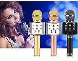Hk Villa WS-858 Wireless Bluetooth Microphone Recording Condenser Handheld Microphone with Bluetooth Speaker