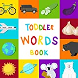 #3: Toddler Word Book : Colors Picture Cards For First 100 Simple Kids Words