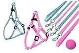 Puppy Set ART SPORTIV PLUS: Leine und 1-2-3 Geschirr ROSA oder HELLBLAU in 2 Größen