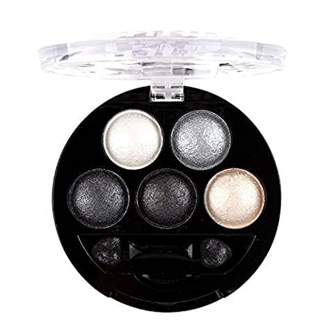 TININNA 5 Colors Glitter Pearly Lustre Eyeshadow Eye Shadow Set Shiny Shimmer Makeup Palette Cosmetic Silver Grey