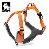 True Love Hundegeschirr Outdoor Adventure II Reflektierende Weste mit 2Leine Aufsätze Passende Leine und Halsband erhältlich tlh6071, XL, Orange