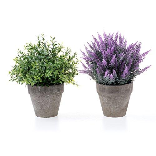 Künstliche Blumen Sträucher (T4U Künstliche Blumen Bonsai Kunstpflanze im Topf, Dekorativ Plastik Zimmerpflanzen Series - Klein Strauch und Lila Gras 2er Set)