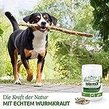 AniForte Wurm-Formel 50 Kapseln- Naturprodukt für Hunde - 3