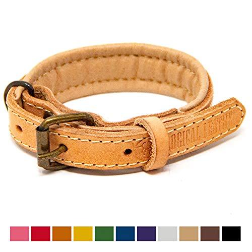 Gepolsterte Leder Hundehalsband