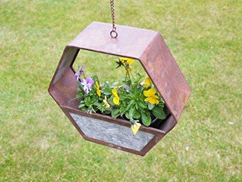 semillas-de-hierba-para-cesta-colgante-flor-maceta-para-jardin-planta-maceta-de-caja-y-cadena