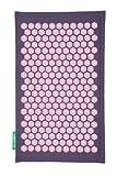Blumenfeld lila-rosa