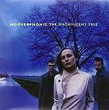Magnificent Tree -Hq-