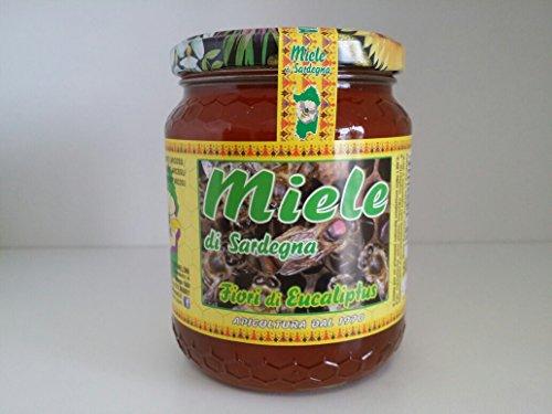 Miele di Eucaliptus sardo (fiori di Eucaliptus) prodotto in Sardegna - Riserva naturale Monte Arcosu (1 Kg)
