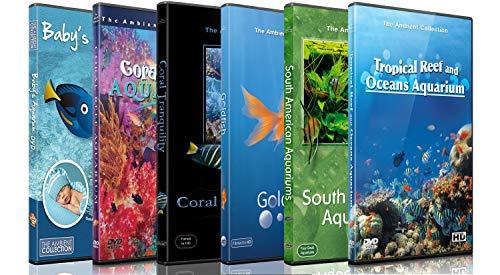 DVD Aquarium Kombi Paket - Beruhigende Szenen und Entspannende Musik von verschiedenen Aquarien und Unterwasser Videos von Tropischen Fischen, Korallen und Meeres Lebewesen -