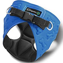 # 1 Rated Small Dog Harnesses by Comfort Fit Pets Our small dog harness vest has padded interior and exterior cushioning ensuring your dog is snug and comfortable Easy to Put on and Take off! - Blue - XS