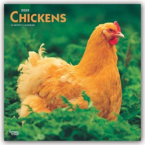 Chickens 2020 Calendar par  Browntrout Publishing